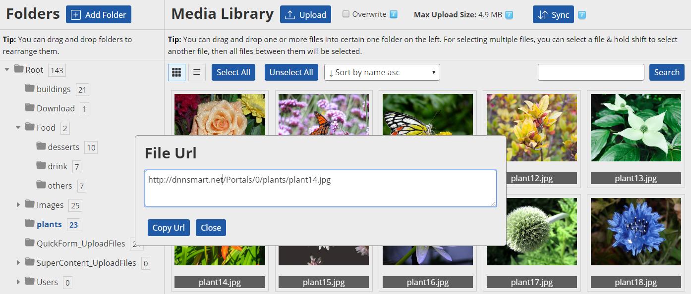 Get File URL